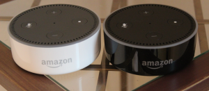 amazonechodot-review-2dots